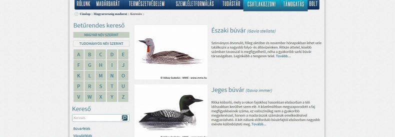 Elérhetővé vált Magyarország madárfajainak részletes adatbázisa!
